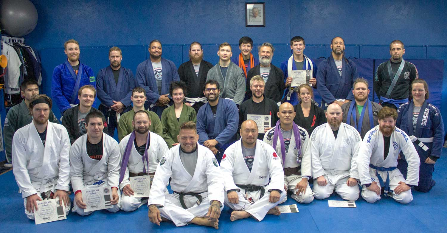 Read more about the article BJJ Adult's Belt Promotions
